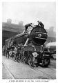 A wash and brush up for The Flying Scotsman (WBoR 14ed).jpg