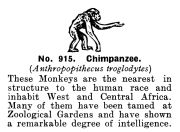 Chimpanzee, Britains Zoo No915 (BritCat 1940).jpg