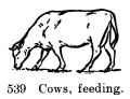 Cows, feeding, Britains Farm 539 (BritCat 1940).jpg