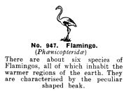Flamingo, Britains Zoo No947 (BritCat 1940).jpg
