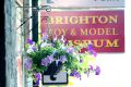 Flowers, Brighton Toy and Model Museum.jpg
