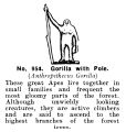 Gorilla with Pole, Britains Zoo No954 (BritCat 1940).jpg