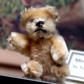 Miniature Blond Bear (Schuco).jpg