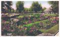 Rose Gardens, Preston Park, postcard (Wardells 664).jpg