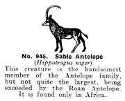 Sable Antelope, Britains Zoo No945 (BritCat 1940).jpg