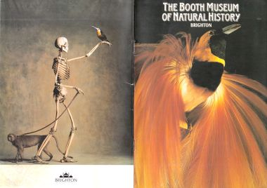 "1990: ""The Booth Museum of Natural History"""