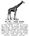 Young Giraffe, Britains Zoo No961 (BritCat 1940).jpg